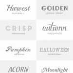 14 Fancy Fonts for Fall
