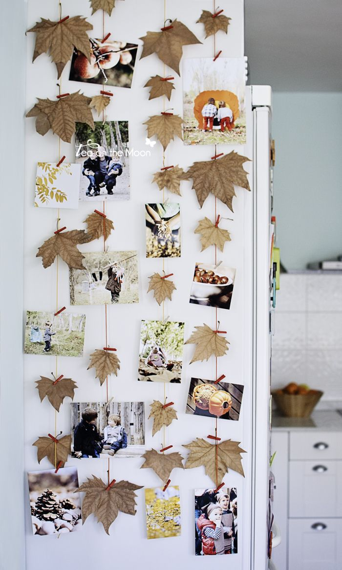Fall Leaf Photo Display