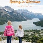 5 Family Friendly Hikes to do in Waterton
