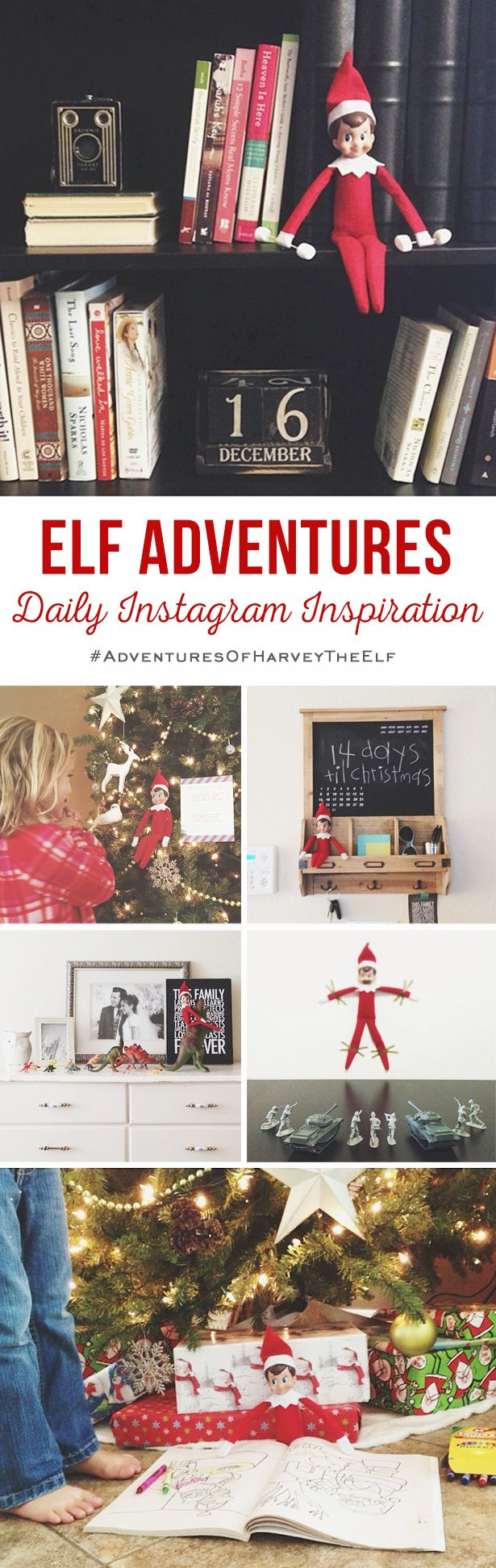 elf adventures