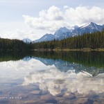 5 Places to Explore Along the Icefields Parkway