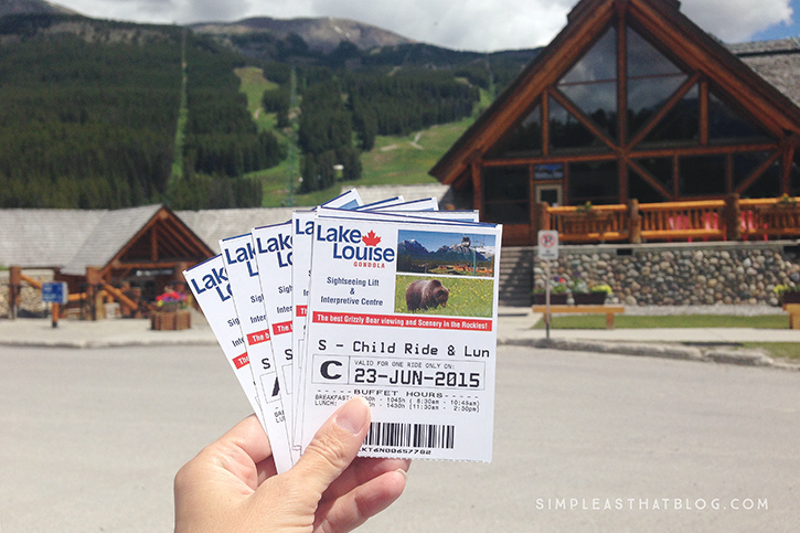 Lake Louise Summer Gondola - some of the best grizzly bear viewing in the Canadian Rockies!