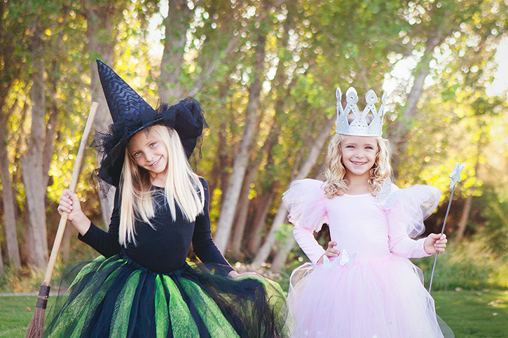 Diy glinda and wicked witch of the west halloween costumes solutioingenieria Images