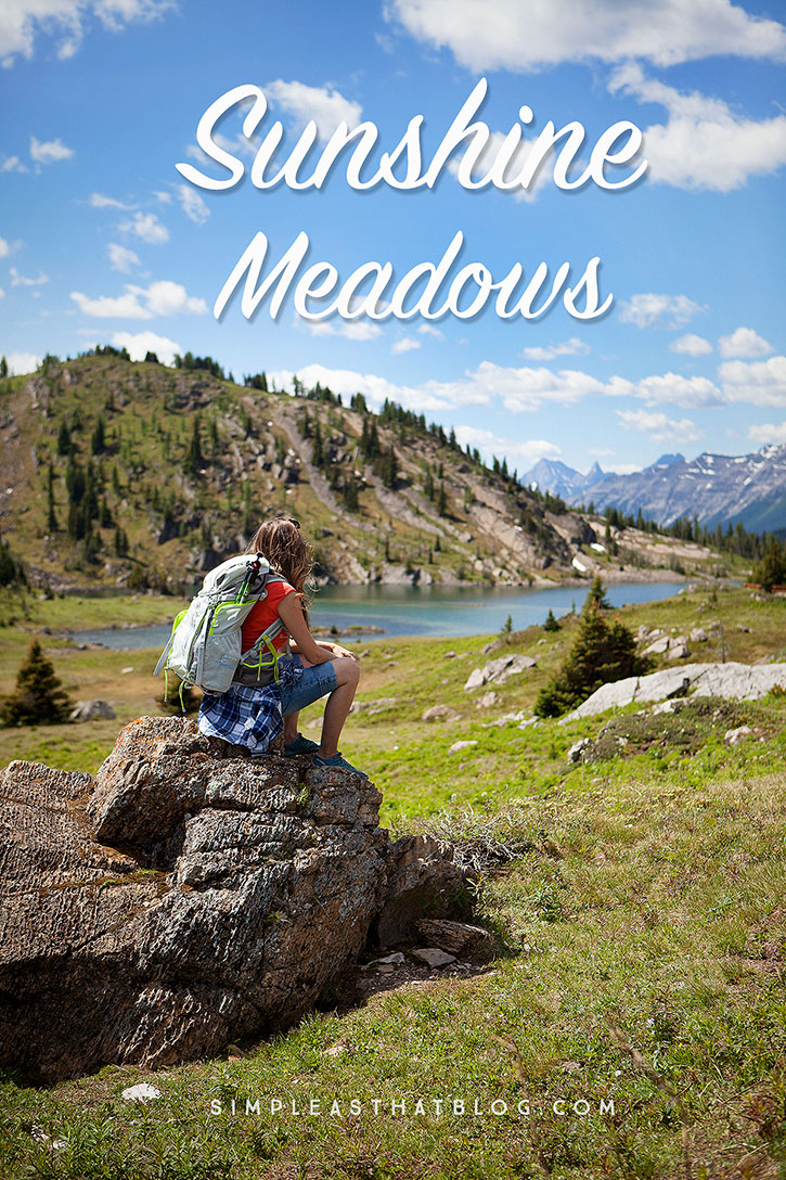 Sunshine Meadows | Take in some of the most stunning alpine settings in the Canadian Rockies. Surrounded by some of the highest peaks in the Rockies, the unobstructed views from the meadows