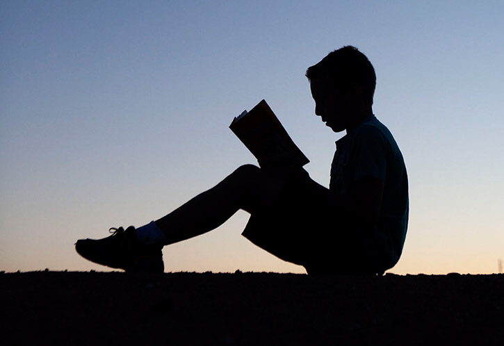 206 Best Nooks Images On Pinterest: Best Chapter Books And Series For Boys, Ages 7-12