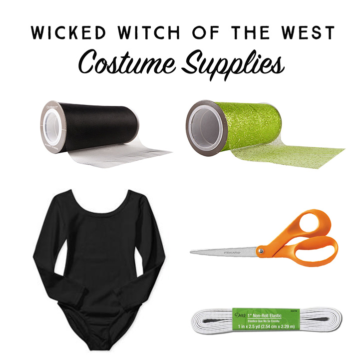 No-sew Wicked Witch of the West DIY Halloween costume.