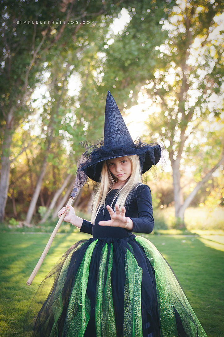 The Wizard of Oz Wicked Witch of the West Child Halloween Costume