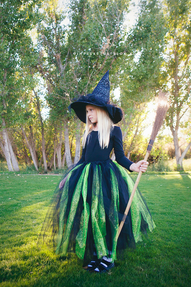 Diy glinda and wicked witch of the west halloween costumes diy no sew wicked witch of the west halloween costume solutioingenieria Choice Image