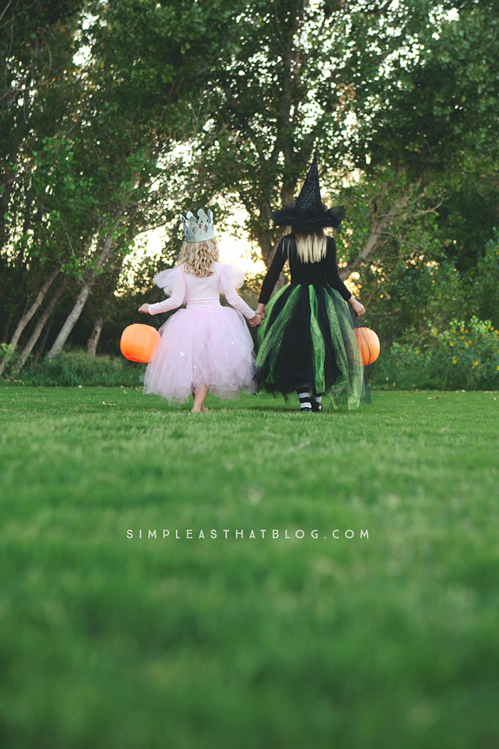 DIY Glinda and Wicked Witch of the West Halloween Costumes ...