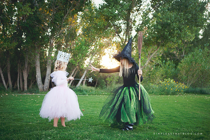 DIY Glinda the Good Witch and Wicked Witch of the West Wizard of Oz costumes that & DIY Glinda and Wicked Witch of the West Halloween Costumes
