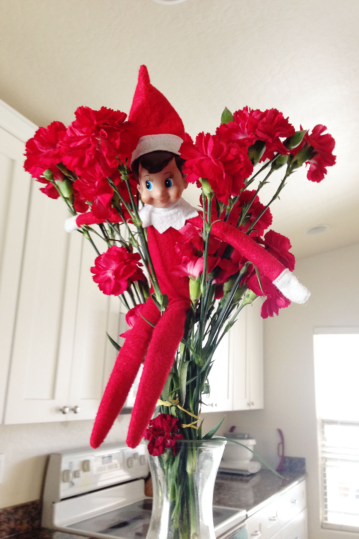 Elf hides in a house plant.