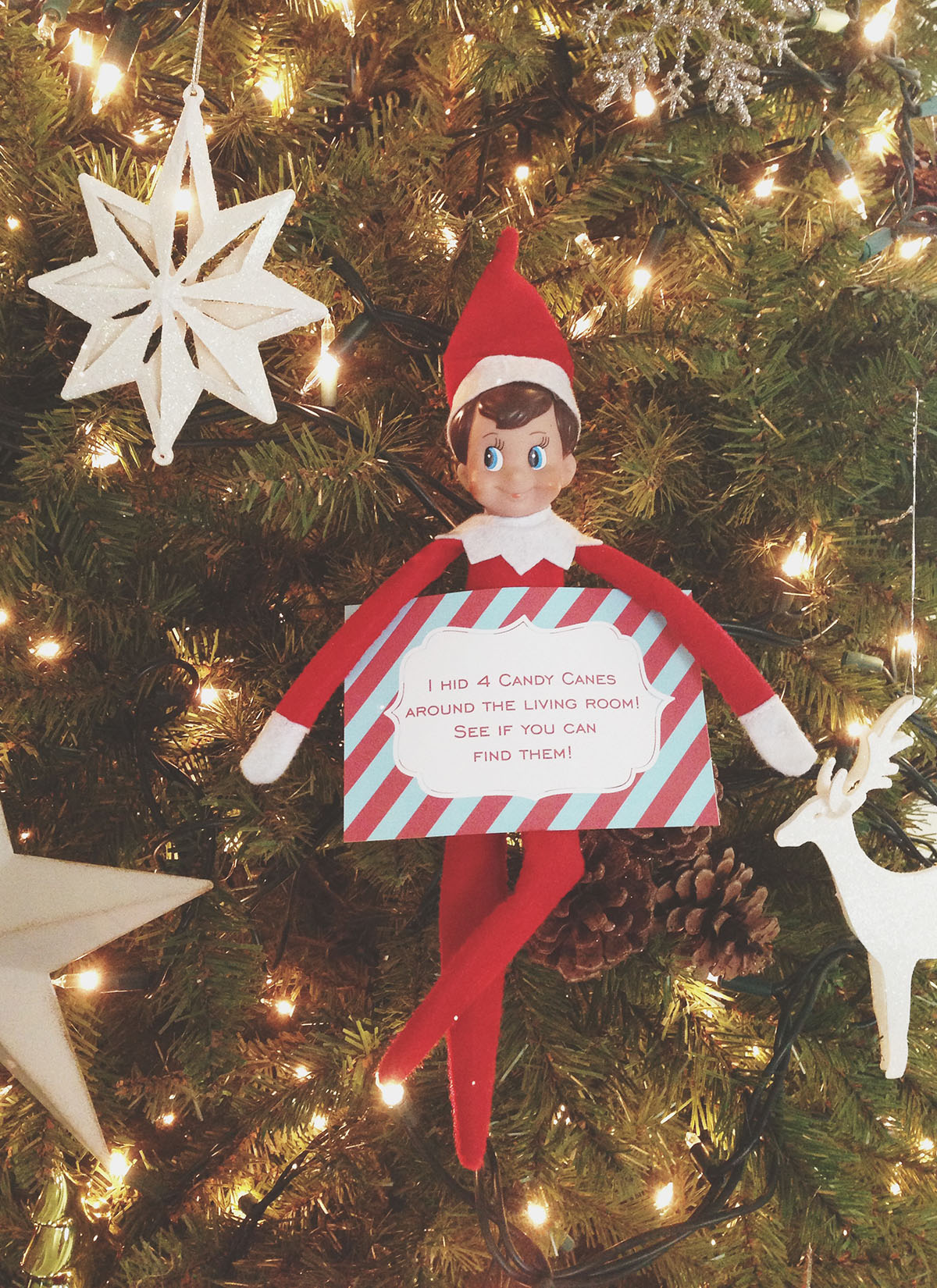 Elf sends the kids on a candy-cane scavenger hunt!