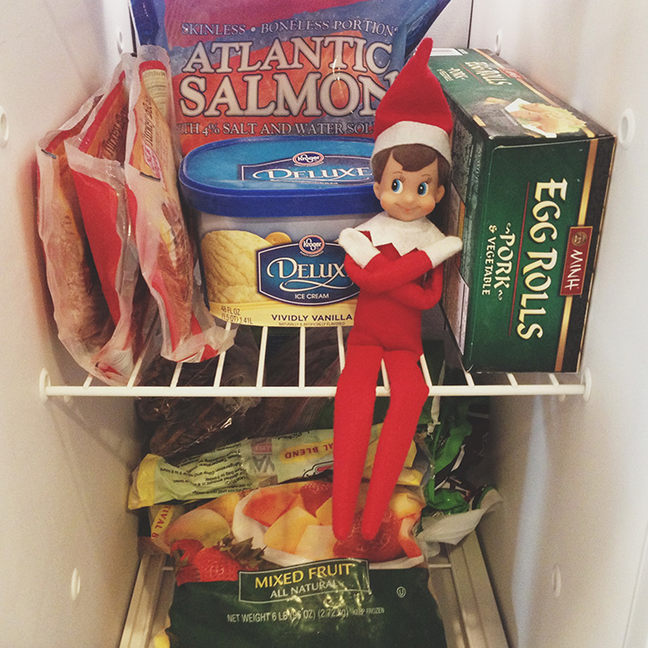 Elf in the freezer.