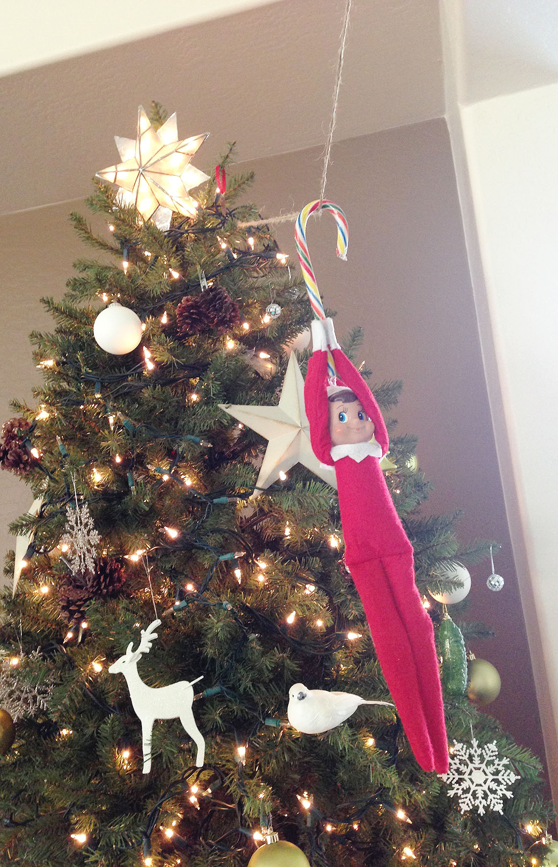 Elf ziplines from the Christmas tree.