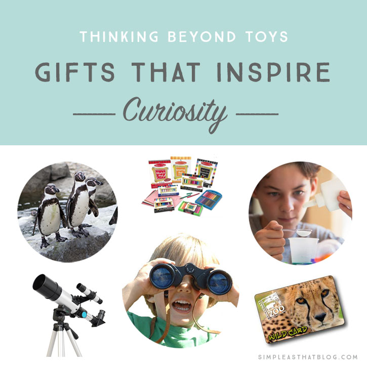 If you would like to give your loved ones gifts that will be enjoyed longer than the usual toys and trinkets, here are some great alternative gifts for the holiday season.