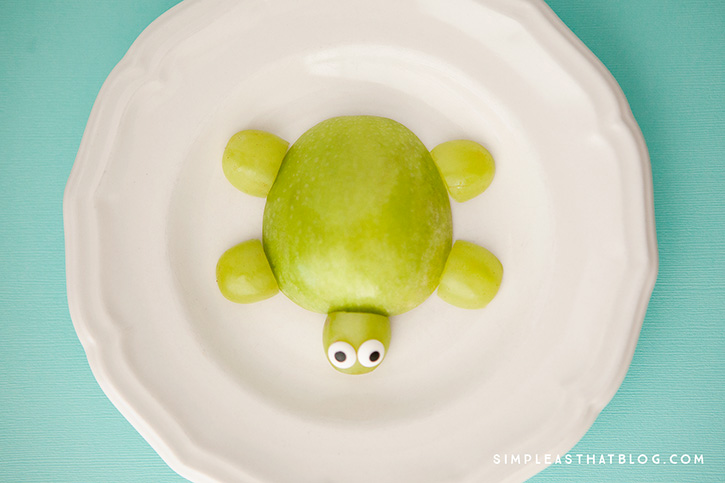 turtle1web