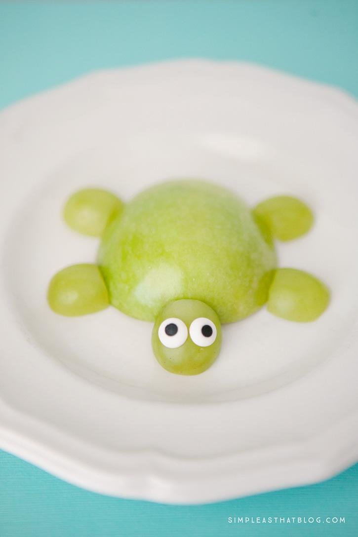 turtle6web