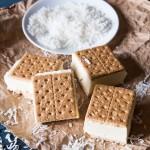 Frozen Coconut Pudding Graham Sandwiches