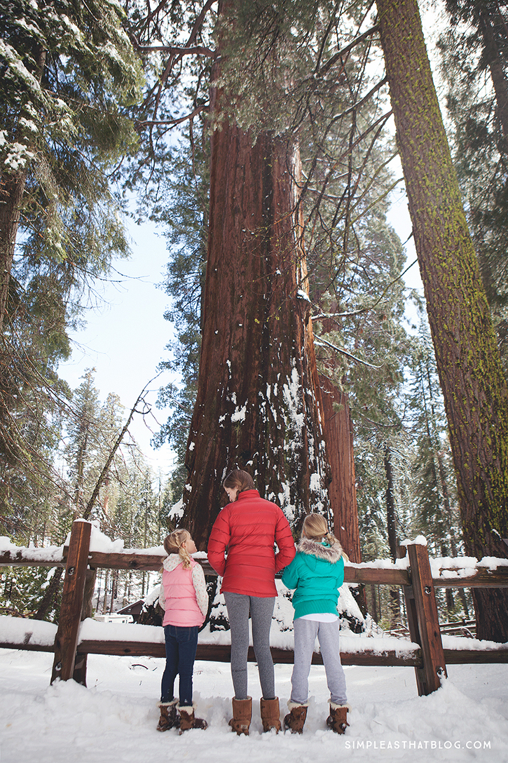 Kings Canyon National Park | It's National Park Week April 14-26! Get FREE admission into all National Parks in celebration of the NPS 100th birthday! What a great chance to get out as a family this spring—to make memories you'll treasure and to deepen those family bonds in the great outdoors!