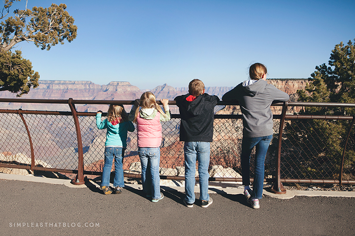 Grand Canyon National Park | It's National Park Week April 14-26! Get FREE admission into all National Parks in celebration of the NPS 100th birthday! What a great chance to get out as a family this spring—to make memories you'll treasure and to deepen those family bonds in the great outdoors!