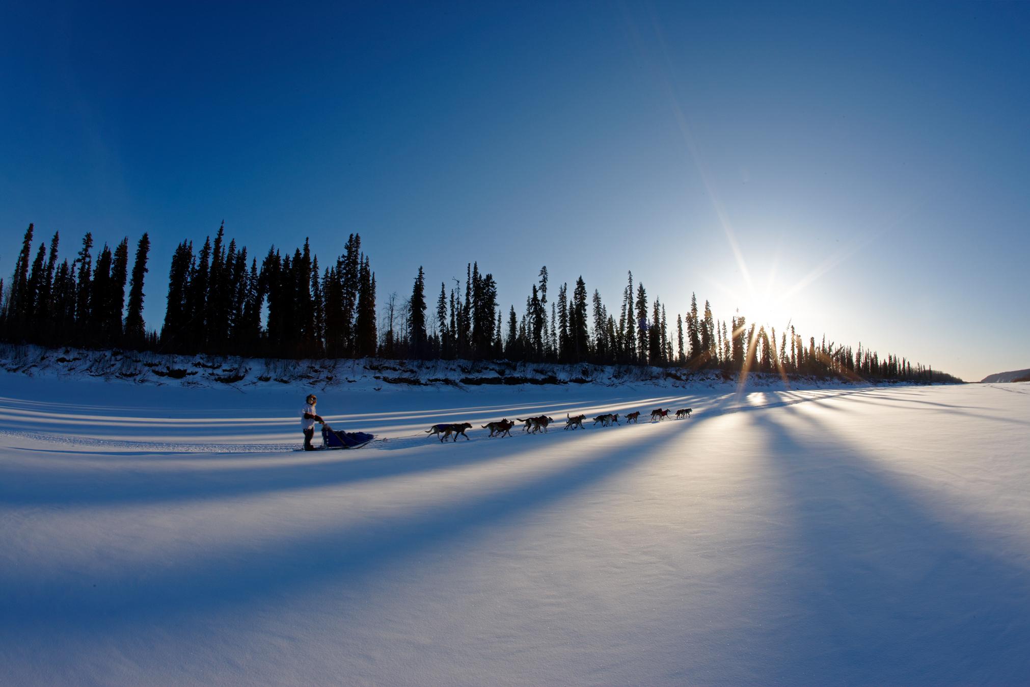 Iditarod dog sled race, Yukon River, Galena, Alaska