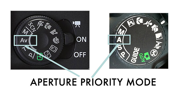 How to shoot in Aperture Priority mode with your DSLR camera to get better pictures!