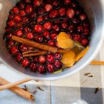 Cranberry Apple Stove Simmer Pot