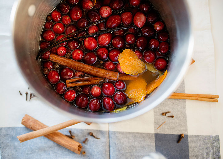 Cranberry Apple Stove Simmer Pot