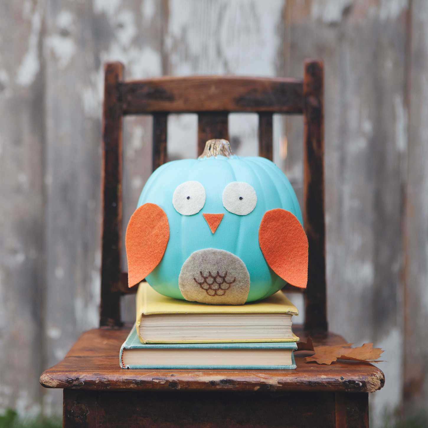 No-carve owl pumpkin.