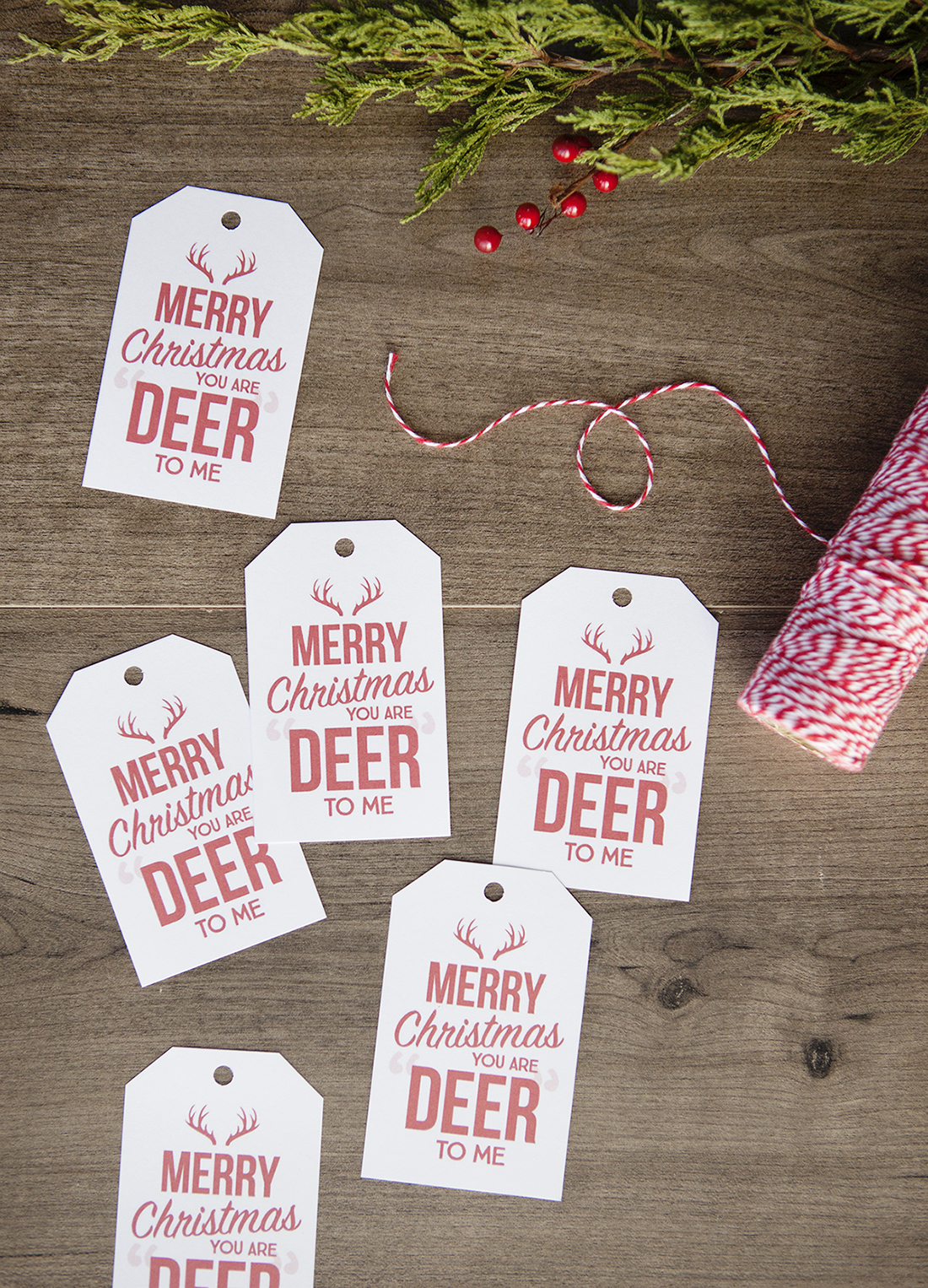 You are DEER to me Christmas Gift Tags