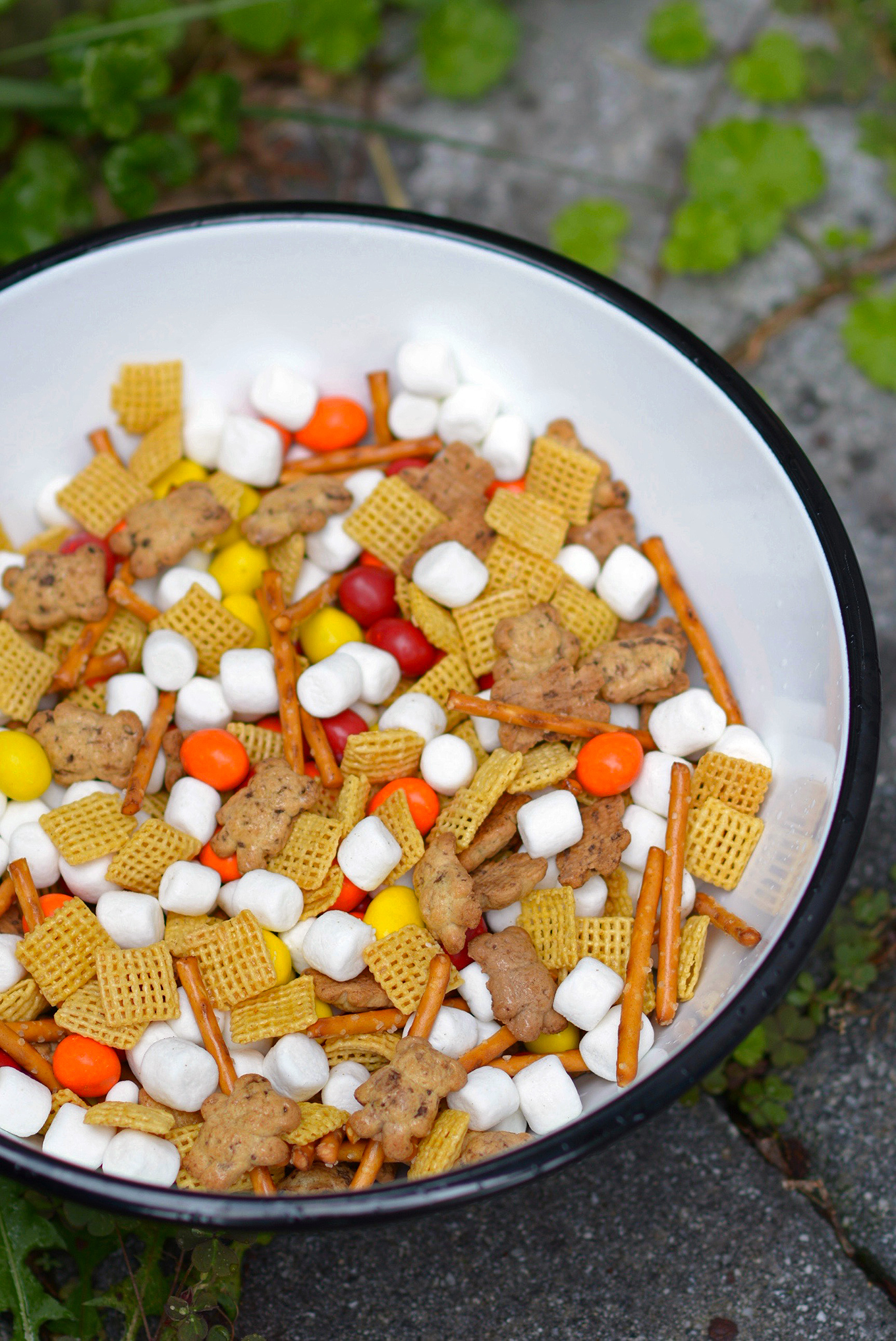 Campfire Kids Snack Mix