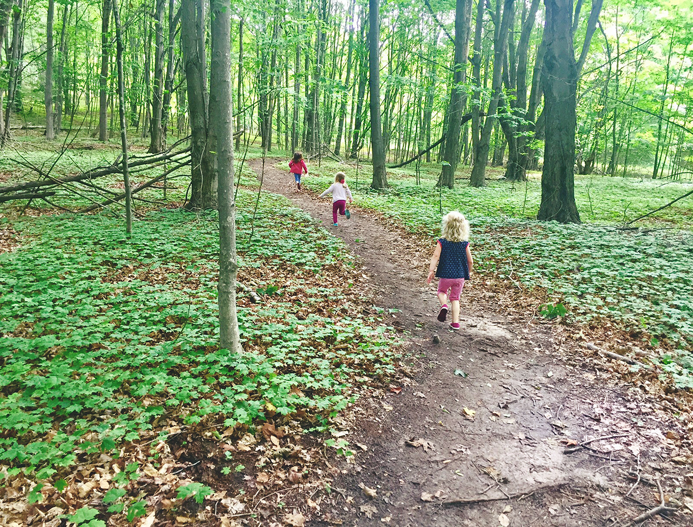 When kids spend time outside they build confidence, become more creative, and grow closer to their families. Here are 5 tips to get your kids out in nature.