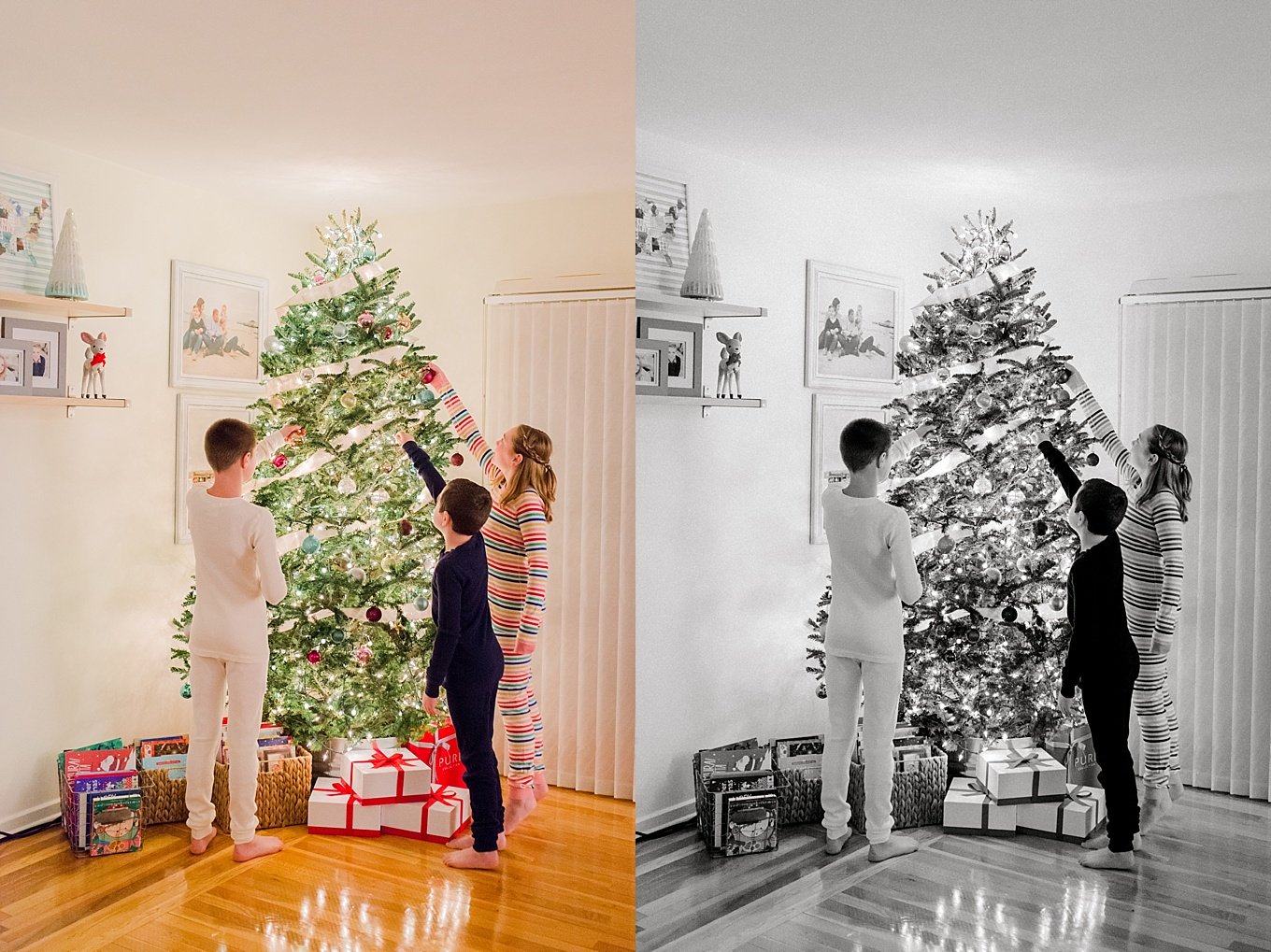 How to take Christmas Tree pictures
