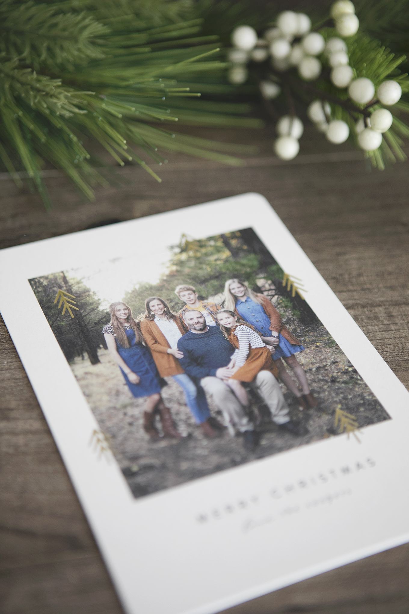 Simple (yet beautiful) Christmas Cards from Minted.